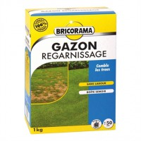 Gazon regarnissage bricorama 1kg
