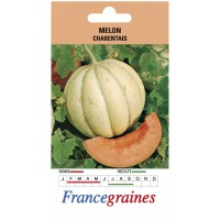 Melon charentais france graines