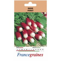 Radis pernot france graines