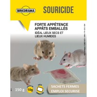 Raticide souricide pâtes bricorama 150g