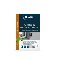 Ciment prompt vicat® 1kg