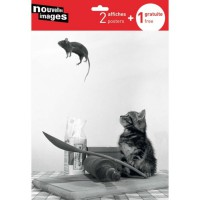 3 affiches chats
