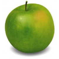 Pommier 'granny smith' / malus domestica 'granny smith'