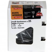 Lot de 25 rivets scell-it acier