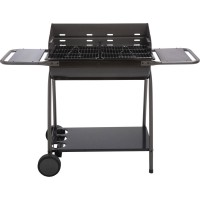 Barbecue barbecue naterial dana, gris anthracite