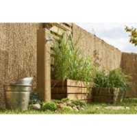 Canisse sans attache nature couleur beige, h.150 x l.300 cm naturelle