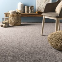 Moquette velours moonshadow artens taupe 4 m